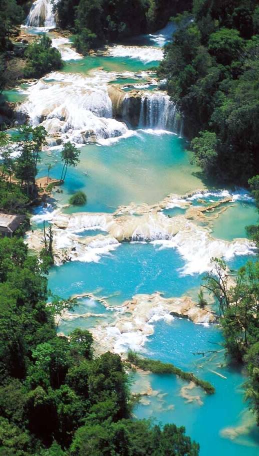 ChiapasTumbalaAguaAzulWaterfalls5-P.jpg picture by berthis_photos